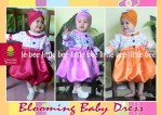 Baju Anak Blooming Baby Dress